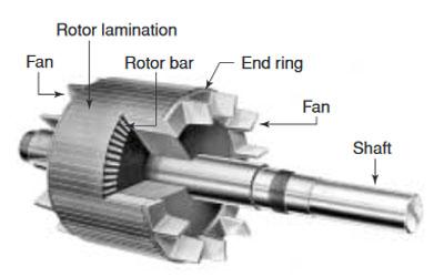 rotor testing